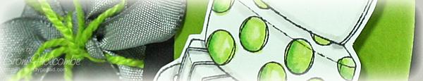 Lime Dot Birthday crop