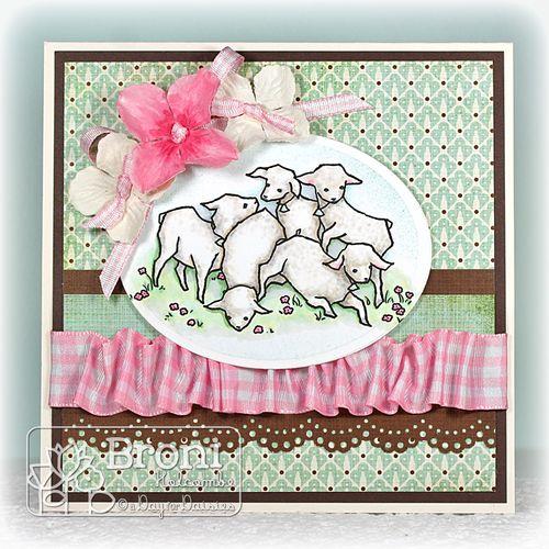 03-02-12 Lambs Playing