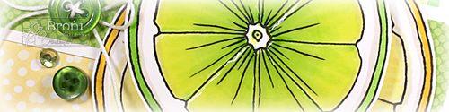 08-17-12 Lemon Round crop