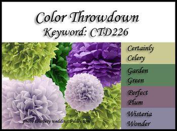 CTD226