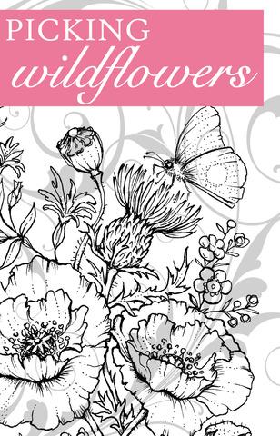 PickingWildflowersGraphic