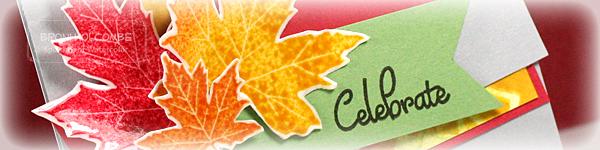 CTD262 Celebrate Fall crop