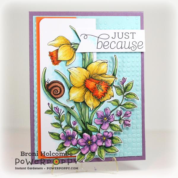 031515 IG Daffodils & Snail