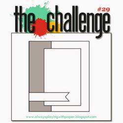 The Challenge 29