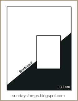 C092015 SSC110