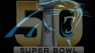 Panthers SB