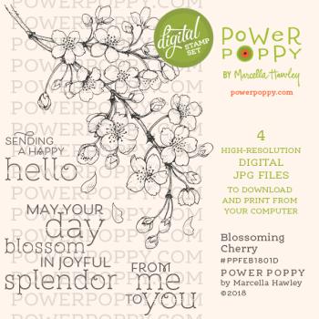 020518 BlossomingCherry_PPFEB1801D