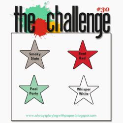 The Challenge #30