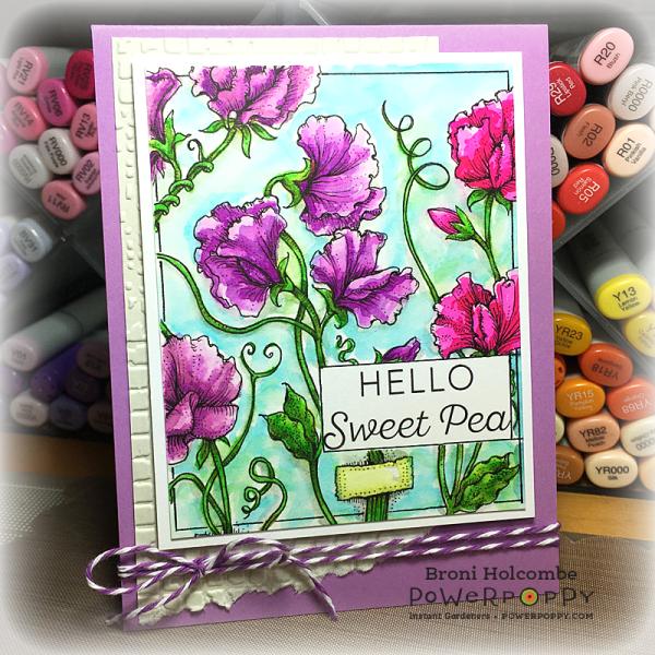 011517 PP Sweet Pea Show