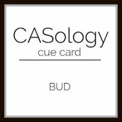 082217 CASology 263 BUD