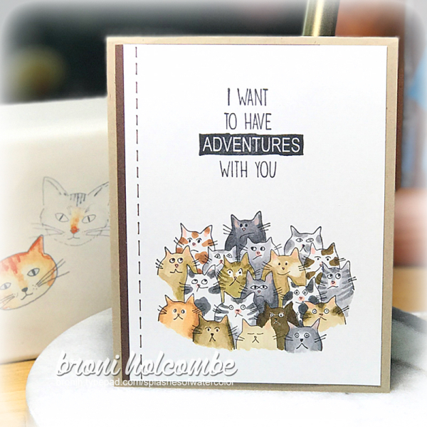 010919 CTD525 Adventure Cats