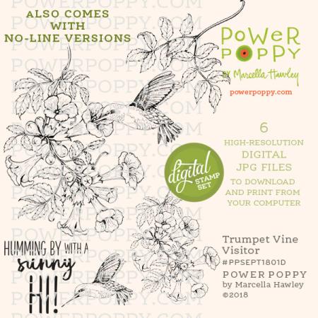 090518 PowerPoppy_TrumpetVineVisitor_PPSEPT1801D