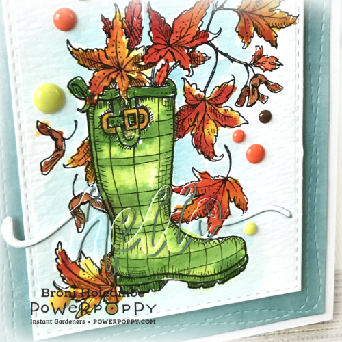 100518 PP Fall Wellies closeup