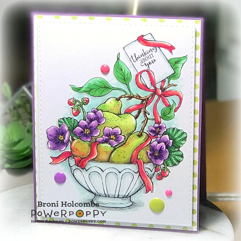 012019 PP Purple Pear