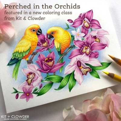 Kit-and-Clowder_PerchedintheOrchids_600_grande