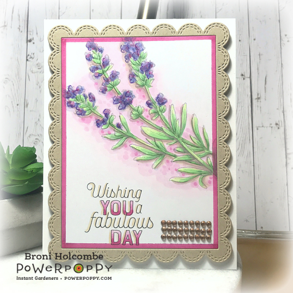 052919 CTD545 PP Lavender Sprigs