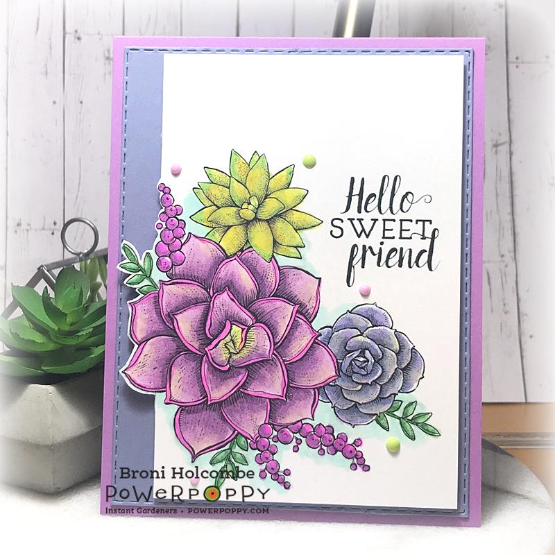 080719 CTD555 Hello Sweet Friend