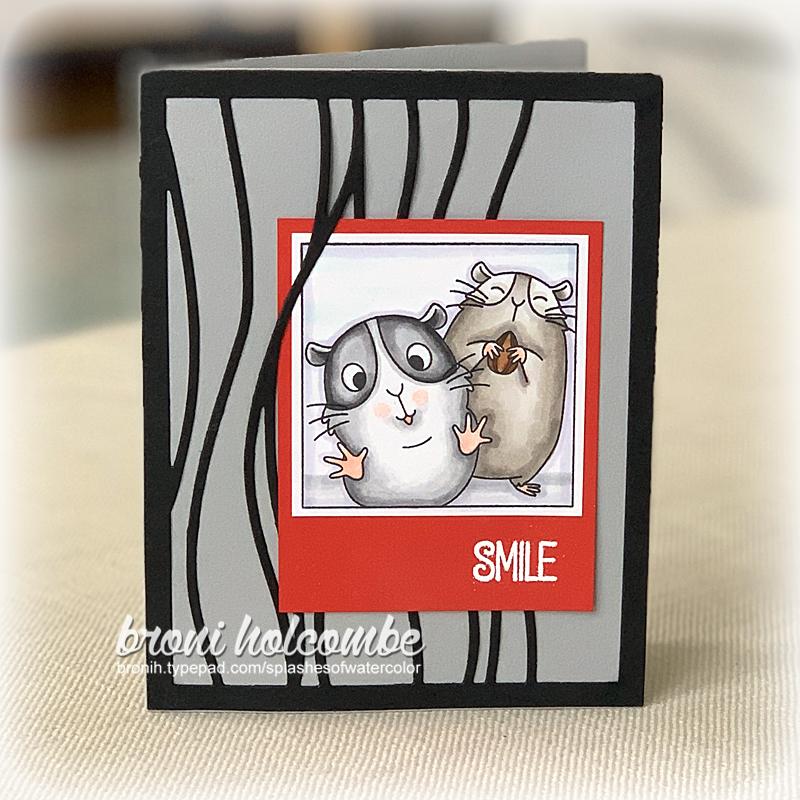 041520 CTD589 Smile Hamsters