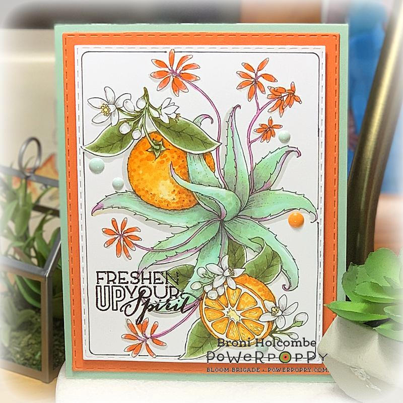082720 PP Aloe and Oranges