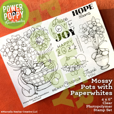 PowerPoppy_MossyPotswithPaperwhites_shop