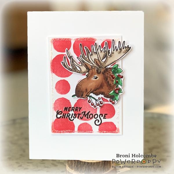 120520 Merry Christmoose 2