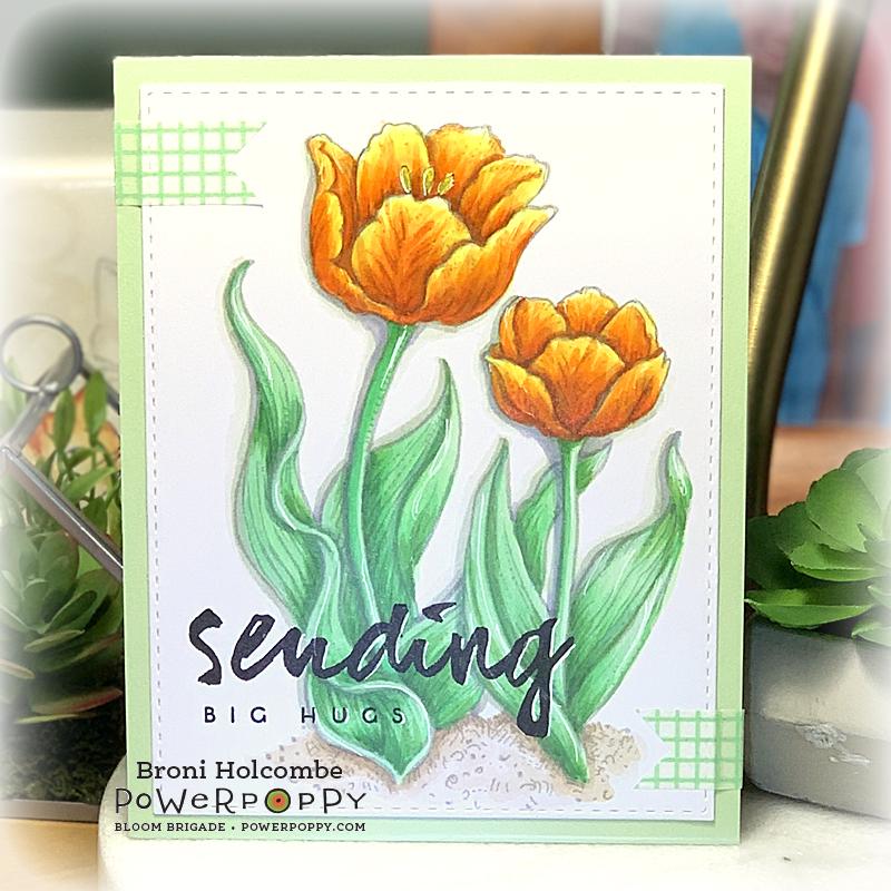 072220 CTD603 PP Tulips