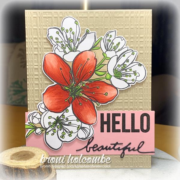 061621 CTD647 Hello Beautiful