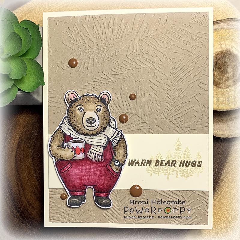 120220 CTD622 Warm Bear Hugs